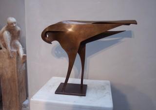 NGI Hawk