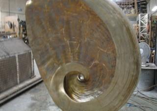 Seashell (4)